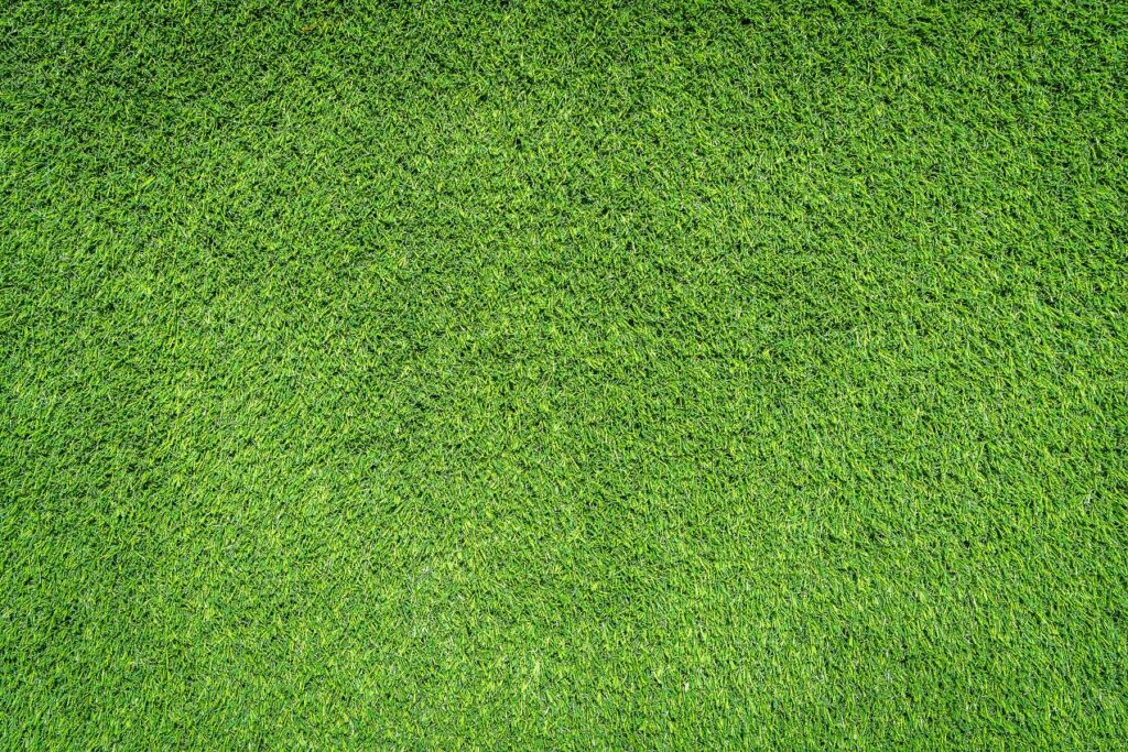 Green grass textures for background