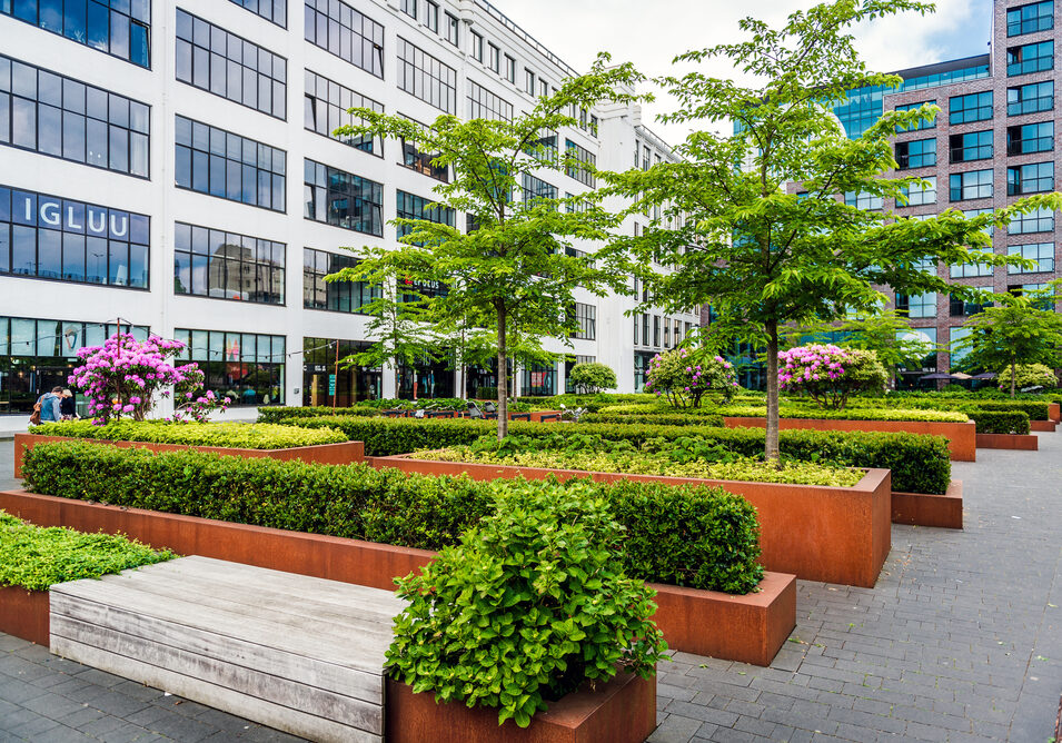 Eindhoven,,Netherlands-,May,24,,2015:,Eindhoven,Downtown.,Lush,Bushes,And